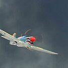 P-40 Tigershark after strafing run by Paul Lenharr II