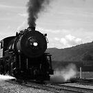 Train coming in by Paul Lenharr II