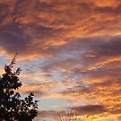 fire clouds by brucemlong