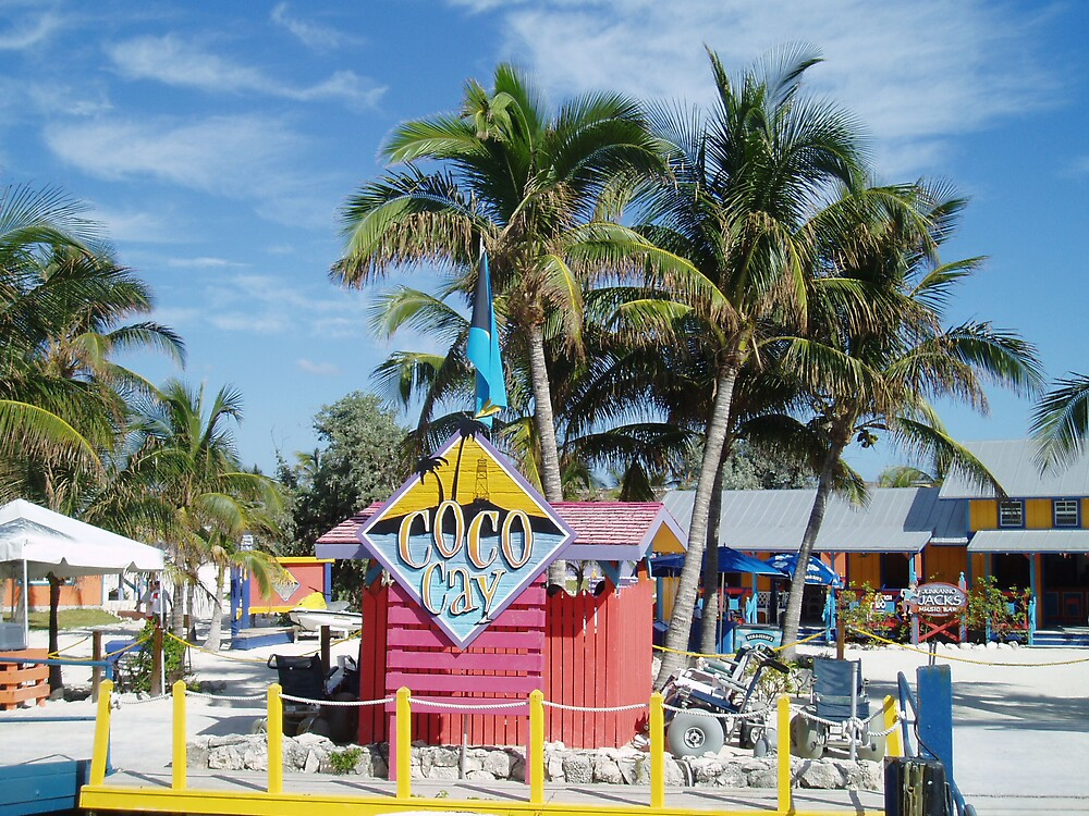 Coco Cay - Bahamas by Deborah Stewart