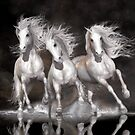 Trinity Galloping White Horses Neutral by Shanina Conway