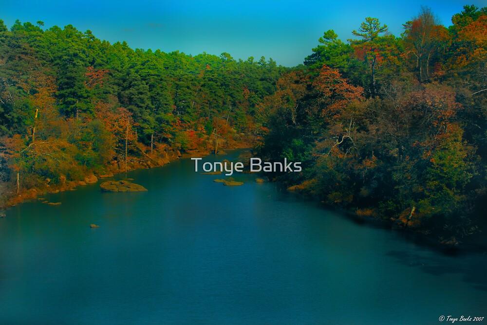 A Rivers Rhythm by Tonye Banks