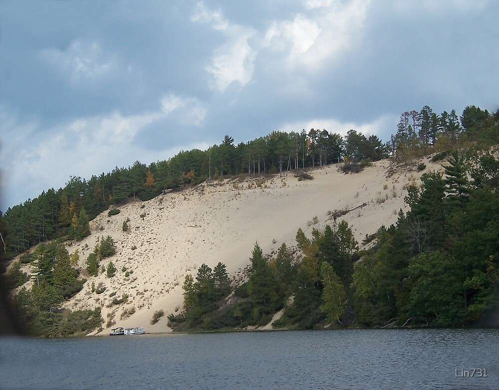 River Dune logging scenic by Lin731