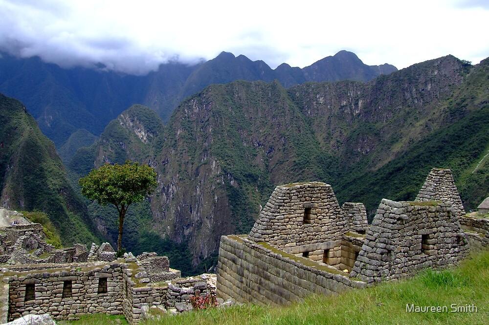View at Machu Picchu, Peru, South America by Maureen Smith