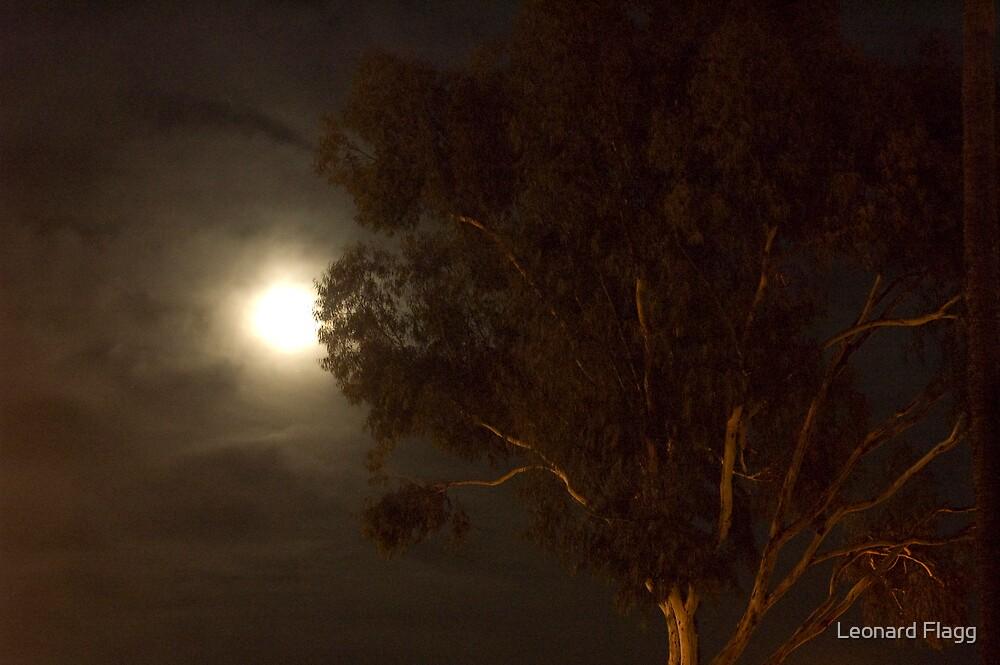 Moon Light by Leonard Flagg