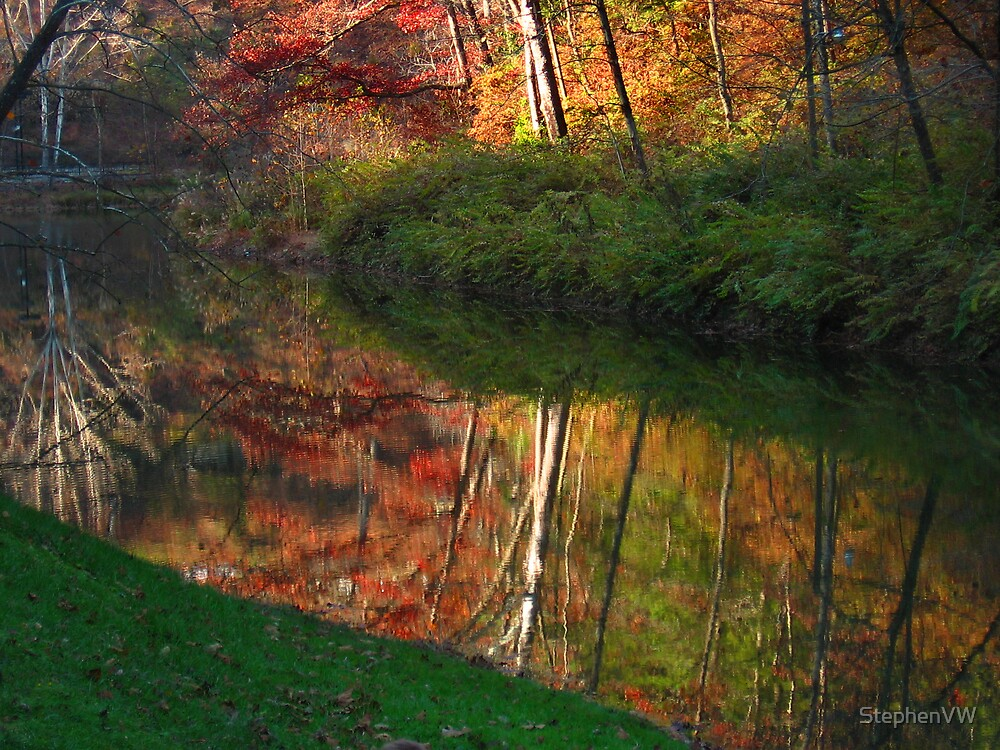 Fall Reflection by StephenVW