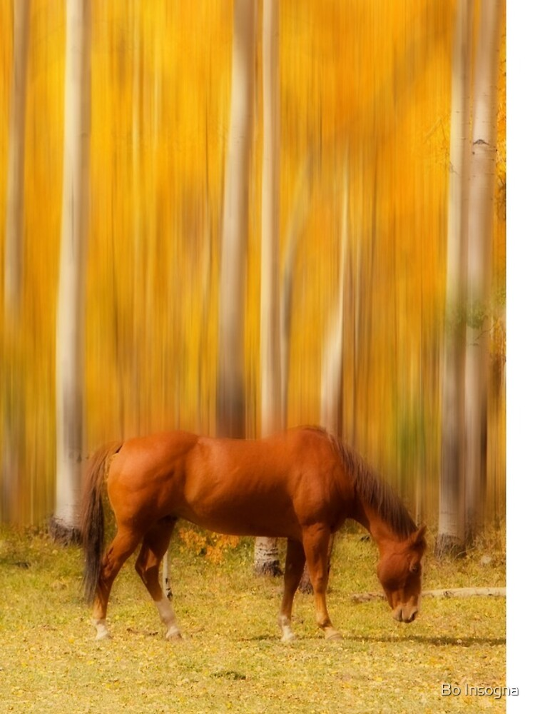 Mystic Horses  by mrbo