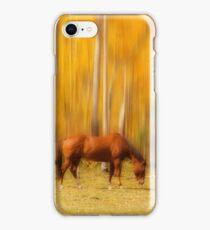 Mystic Horses  iPhone Case/Skin