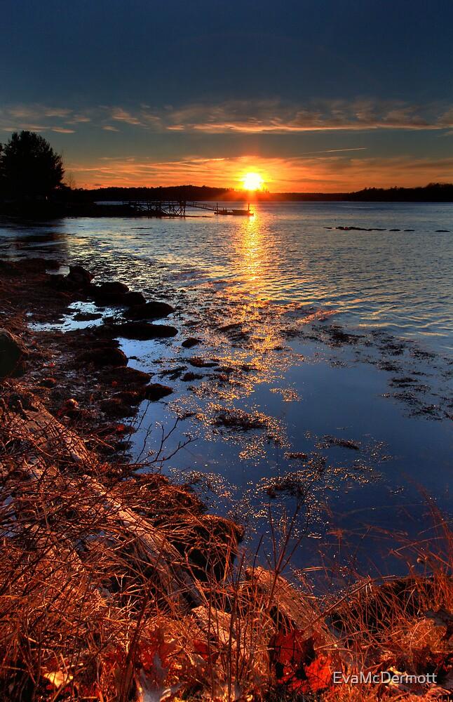 November Sunset by EvaMcDermott