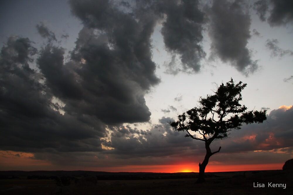 Dog Rocks Sunset by Lisa Kenny