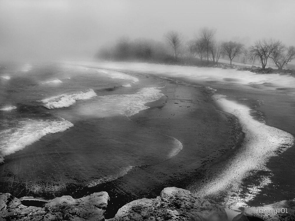 Snowstorm in B&W by hammye01