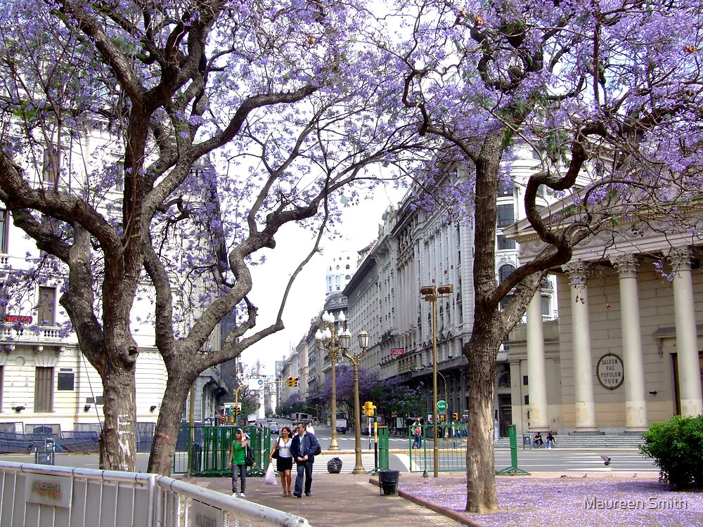 Scene from City Square Buenos Aires, South America by Maureen Smith