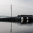 Backwaters - Munroe Island by Guy  Berresford