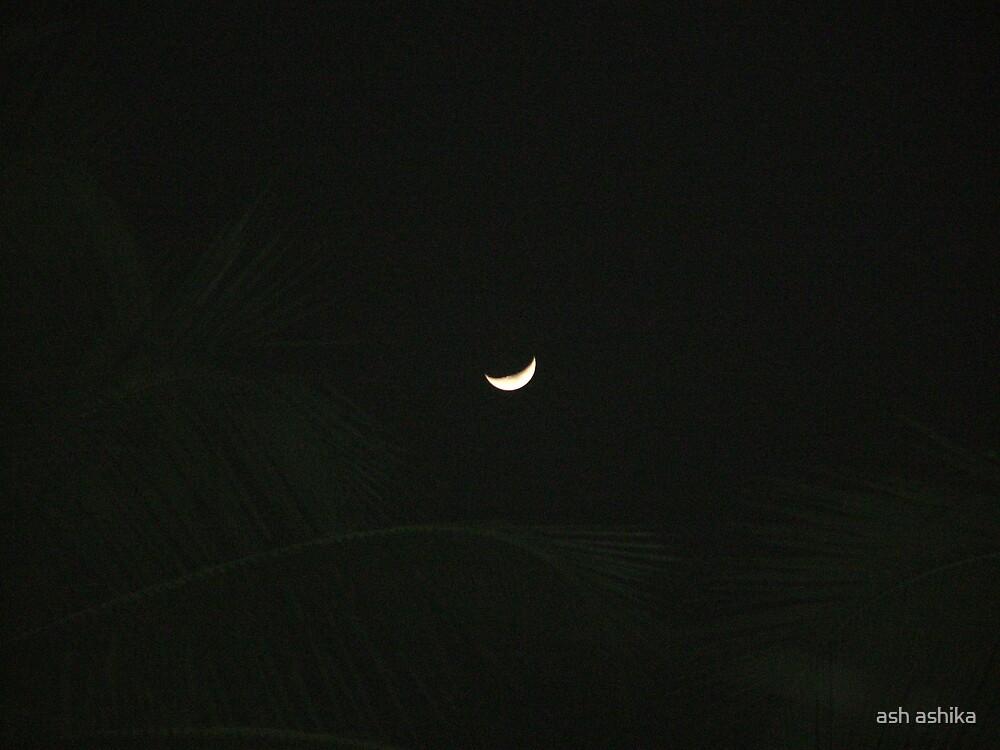half moon by ash ashika