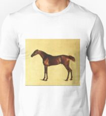 George Stubbs - Pangloss About 1762 T-Shirt