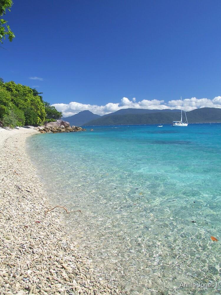 A coral paradise by Annie Jones