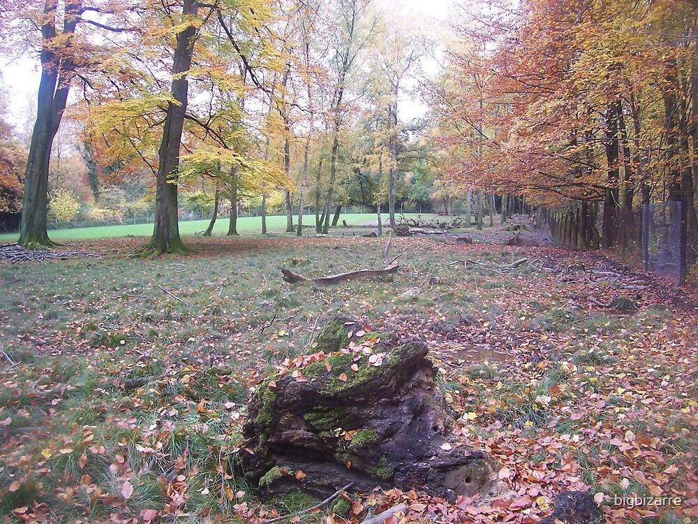 Wild life Park Dusseldorf by bigbizarre