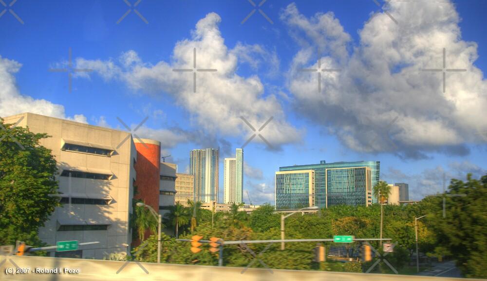 Downtown Miami - DSC_1553 by photorolandi
