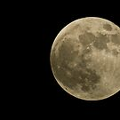 Luna by Nick Johnson