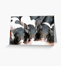 Mother's Milk Is Best Greeting Card