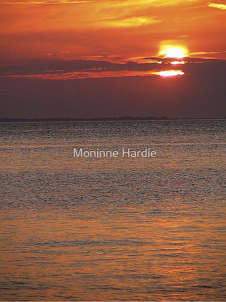 Orange Blaze by Moninne Hardie