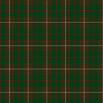 MacKinnon Hunting #2 Clan/Family Tartan  by Detnecs2013
