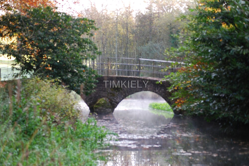 A BRIDGE OVER STEAMY WATER by TIMKIELY