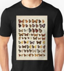 The Macrolepidoptera of the world a systematic account of all the known Butterflies Moths Adalbert Seitz V1 V3 1906 075 Zephyrus Cigaritis Unisex T-Shirt