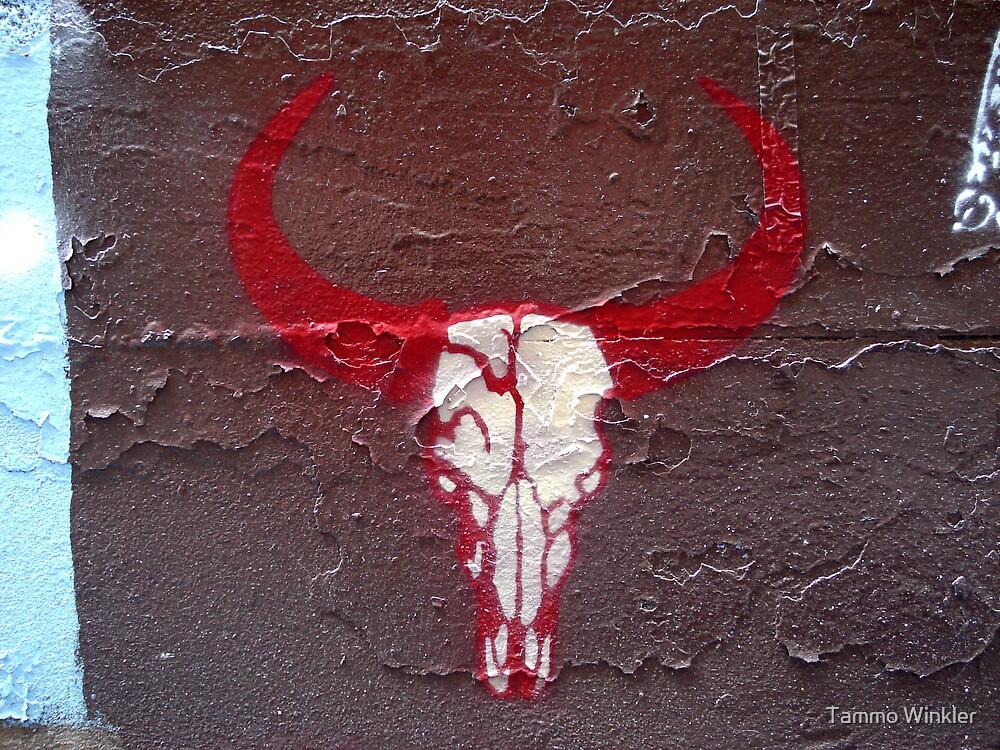 Buffalo Skull by Tammo Winkler