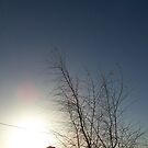 winter morning by CiaoBella