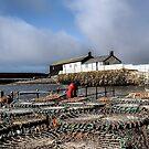 Crab Pots At The Harbour - Lyme Regis by Susie Peek