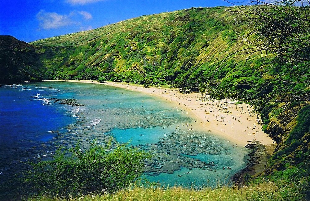 Hanauma Bay, Oahu, Hawaii by SusanC