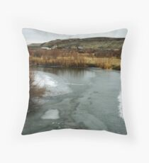 A Glass of Icewater Throw Pillow