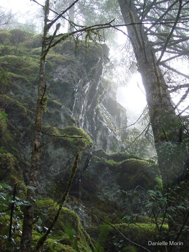 Moist Mountains by Danielle Morin