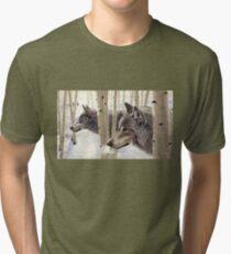 Among The Aspens Tri-blend T-Shirt