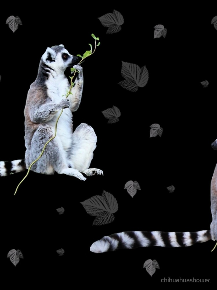 Cute Lemur and flowers by chihuahuashower