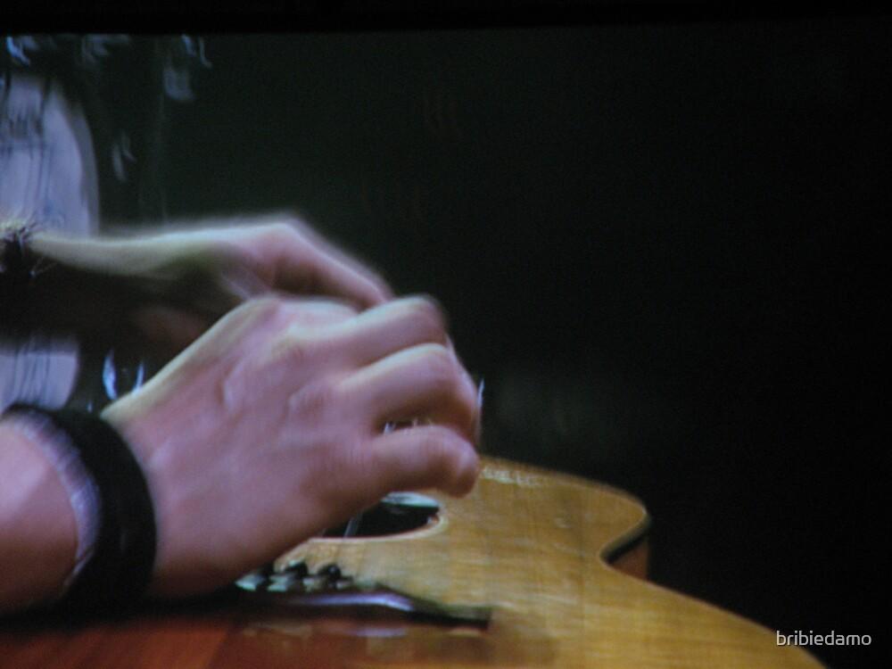 The Mans' Hands by bribiedamo