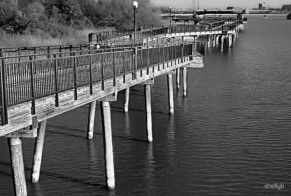 The Boardwalk by shellyb