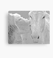 animal lovers Canvas Print