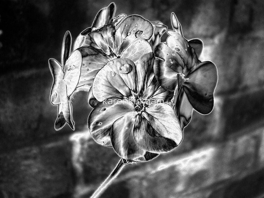 Silver geranium by karenkirkham