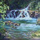 Gentle Falls by Karen Ilari