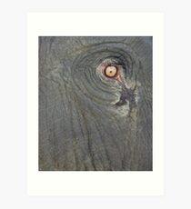 Elephant Eye Art Print