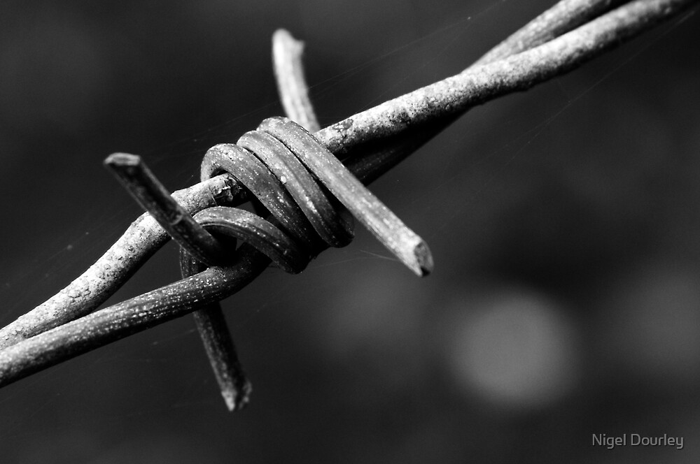 Barbed by Nigel Dourley
