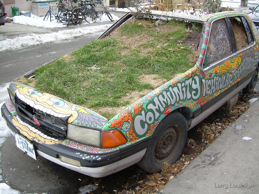 A REAL GREEN CAR by Larry Llewellyn
