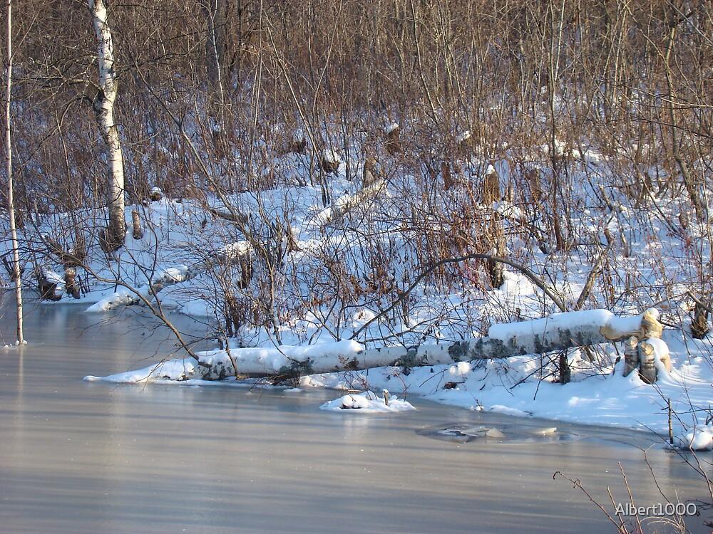 Winter's breath #2 by Albert1000