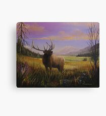 My Meadow Canvas Print