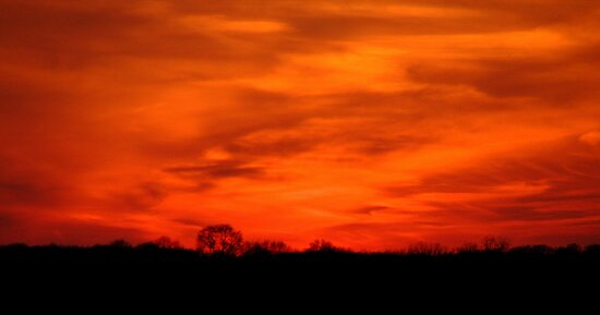 """""""May I never miss a sunset or a rainbow because I am looking down"""" - Sara June Parker by Jay Mody"""