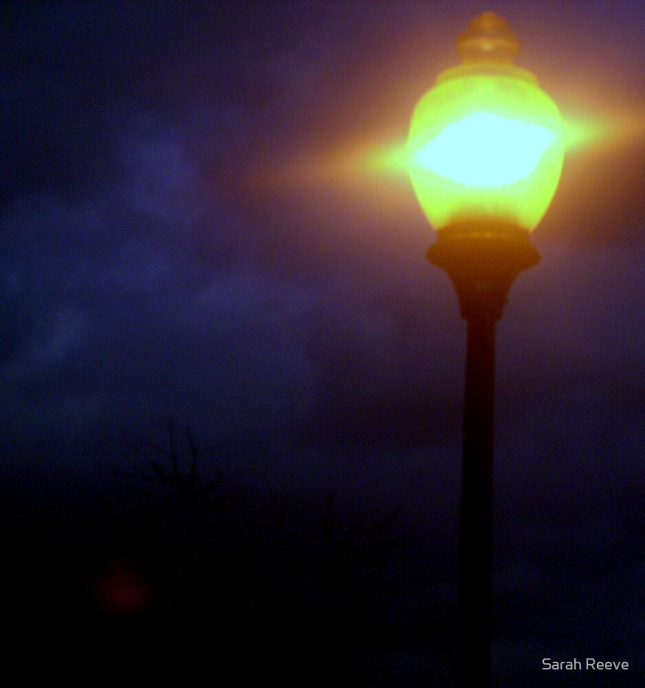 Shine by Sarah Reeve