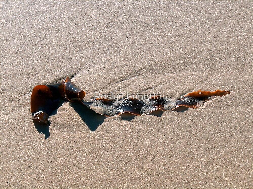 seaweed by Roslyn Lunetta