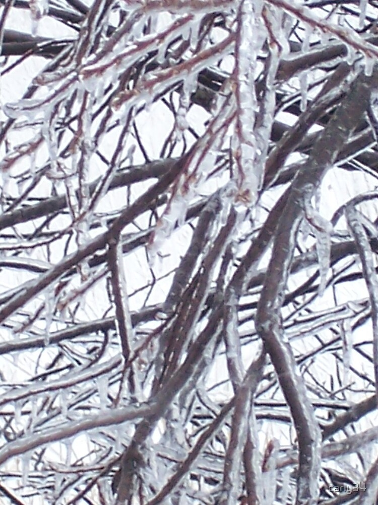 Frosted Branches Part 2 by carly34